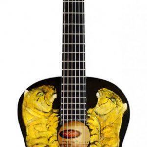 Beschilderde gitaar